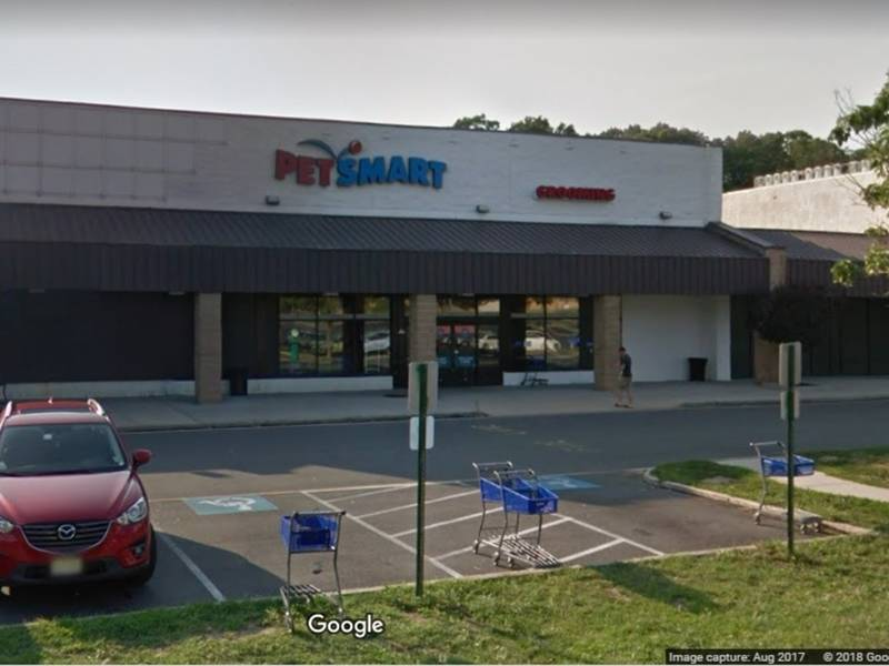 Dog dies after grooming at toms river petsmart toms river nj patch solutioingenieria Image collections