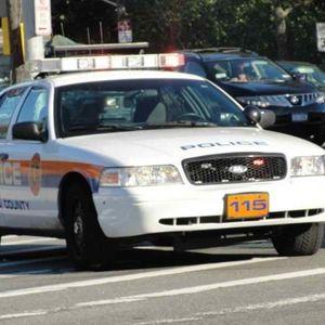 Cops: GPS Stolen, Gym Locker Theft In Hicksville