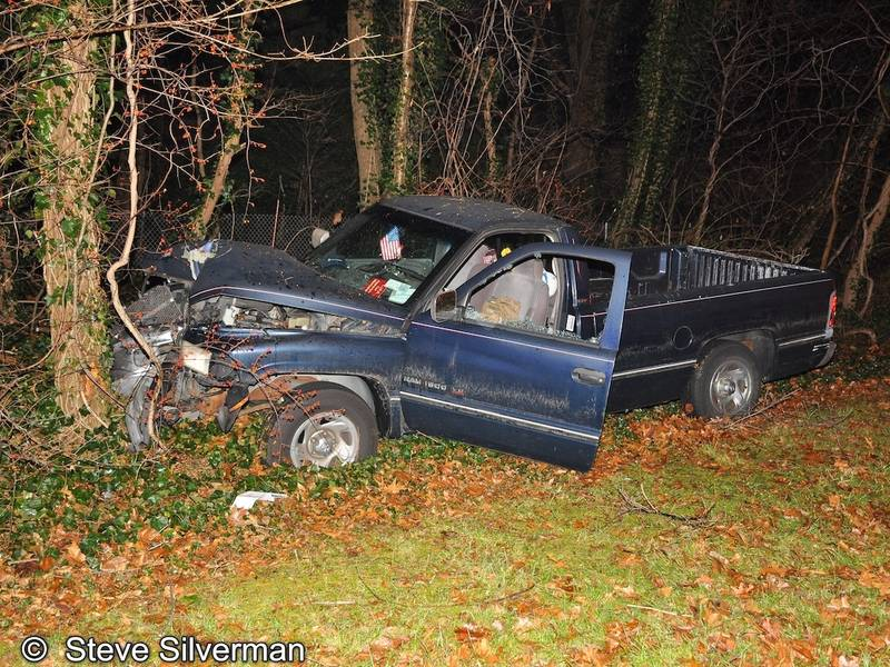 Driver Killed After Pickup Truck Crashes Into Trees On NSP