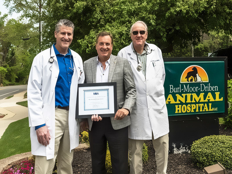 Mba Recognizes Burl Moor Driben Animal Hospital On 50th Anniversary Moorestown Nj Patch