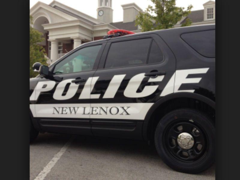 New Lenox Scouts Food Drive