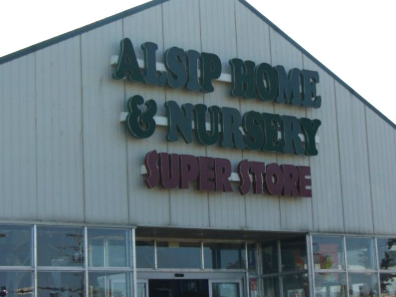 Alsip Nursery To End Rescue Operations