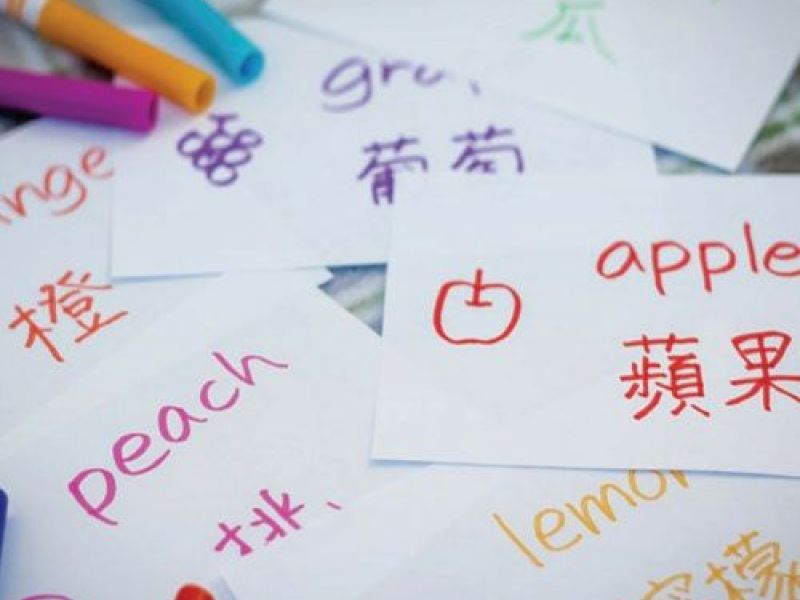 Chinese Language And Calligraphy Classes Will Be Offered