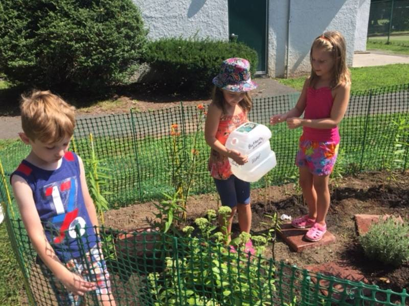 Butterfly Garden Brings Bloomfield Neighbors Together | Bloomfield ...