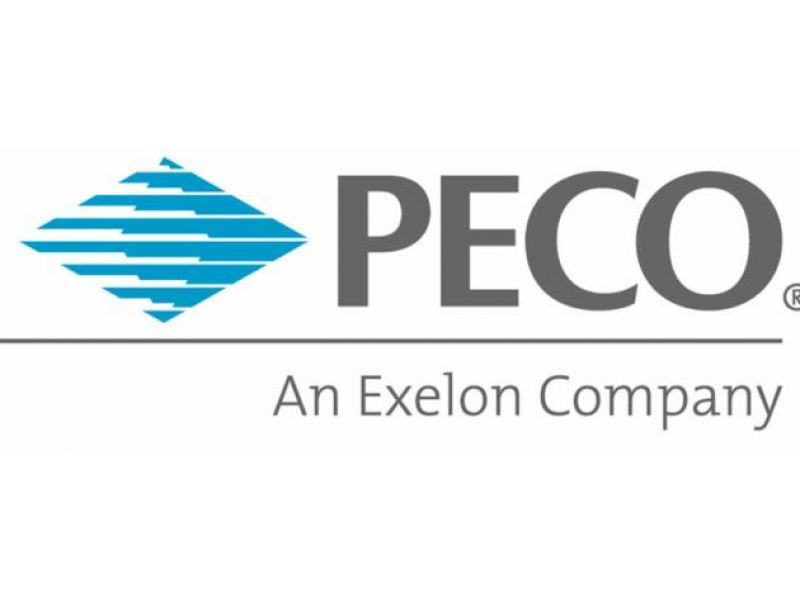 Image result for peco