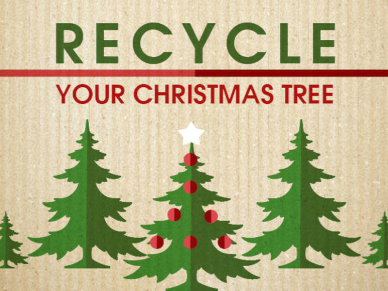 How To Dispose Of Your Christmas Tree In The Limerick Area
