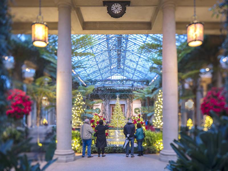 Longwood Gardens Christmas: 500K Lights, Carols, Floating Trees - Longwood Gardens Christmas: 500K Lights, Carols, Floating Trees