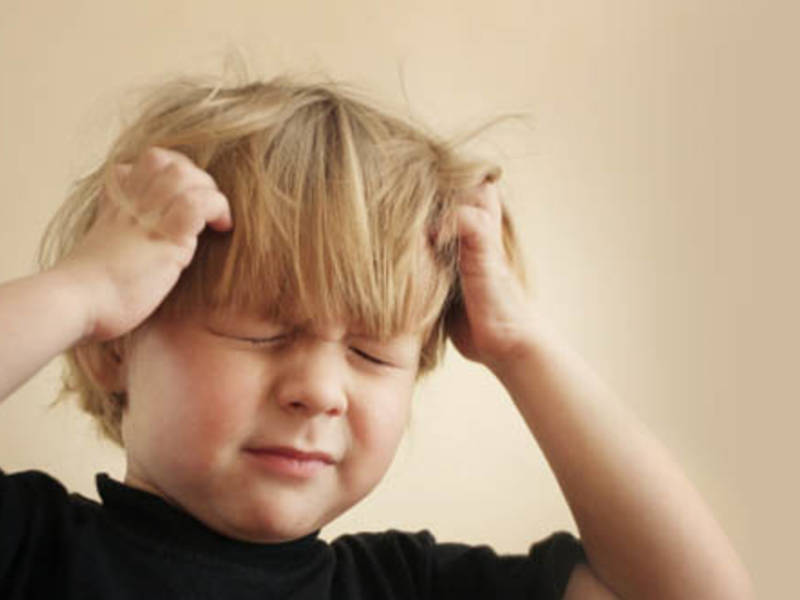 There Are Things In My Kids Hair Is It Head Lice Maplewood