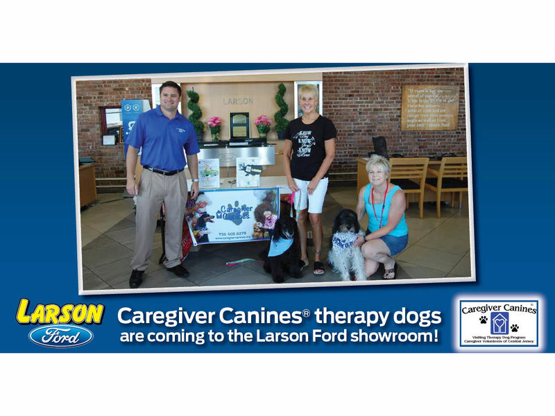 dog lovers invited to larson ford's therapy dog showcase | toms
