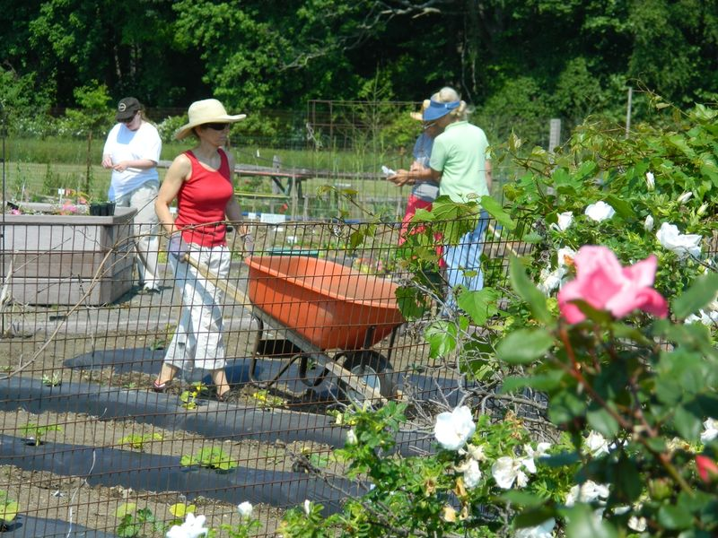 New Sept Master Gardener Classes At South Brunswick 39 S Earth Center South Brunswick Nj Patch