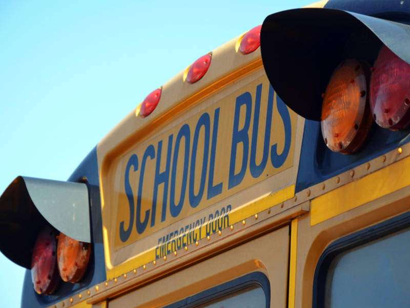 Car Crashes Into Holmdel School Bus; Driver Of Bus Injured
