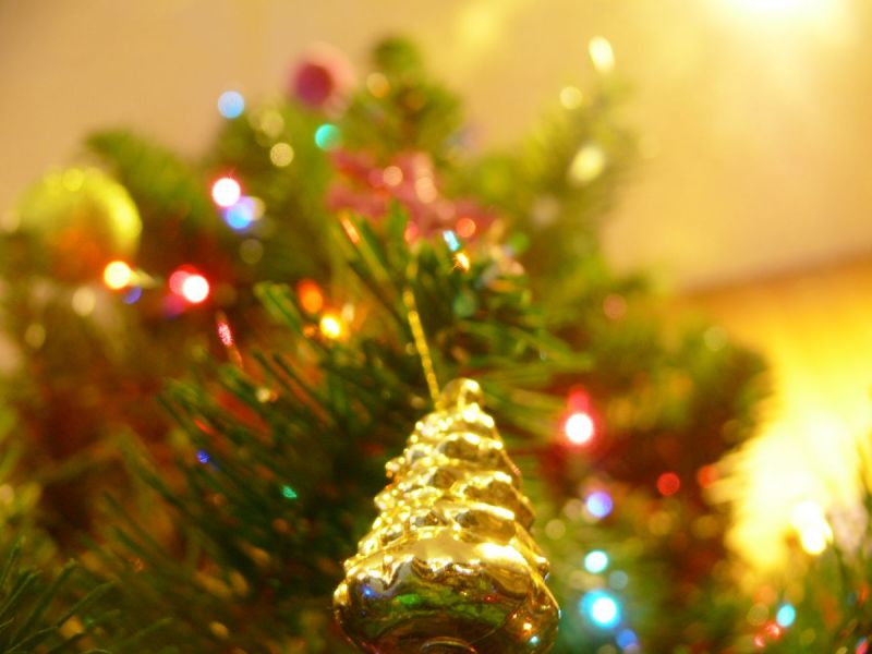 Where To Recycle Your Christmas Tree In Somerset County