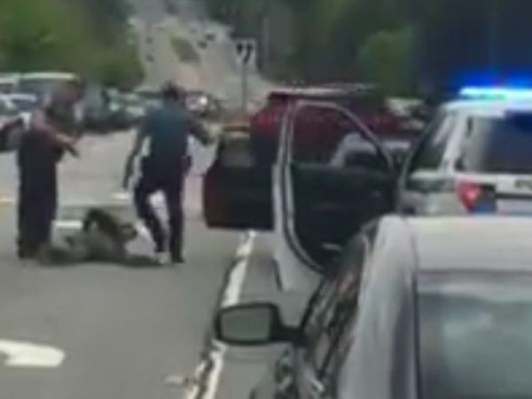 Two Gwinnett officers fired after stomping, punching motorist