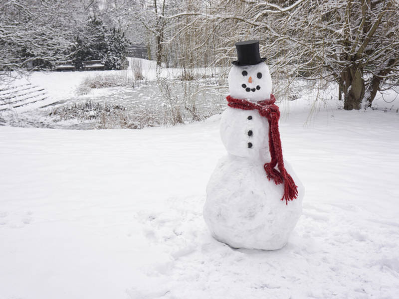 MA Weather: White Christmas Could Be In The Cards Dec. 25 2018 ...