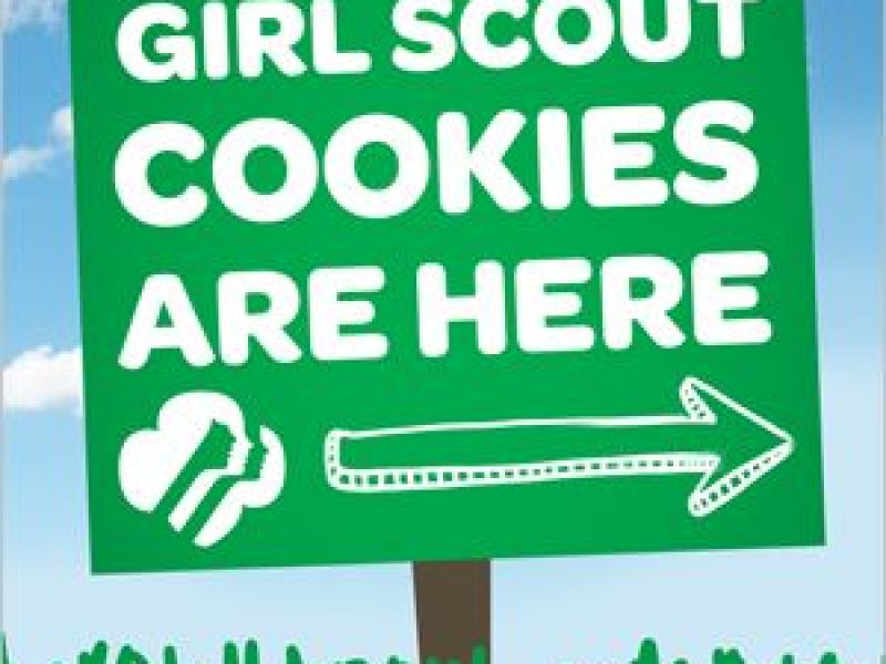 local troop selling girl scout cookies andover ma patch