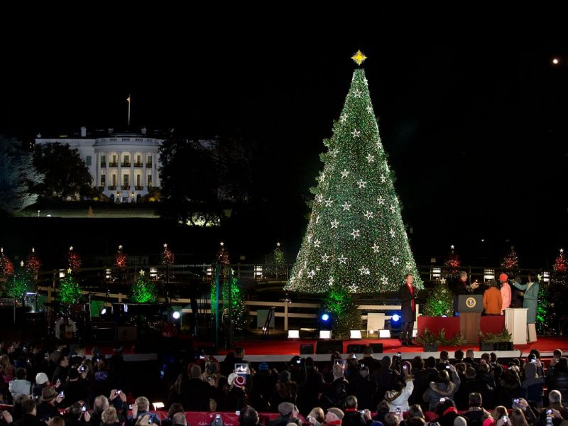 watch live 2016 national christmas tree lighting ceremony at the white house