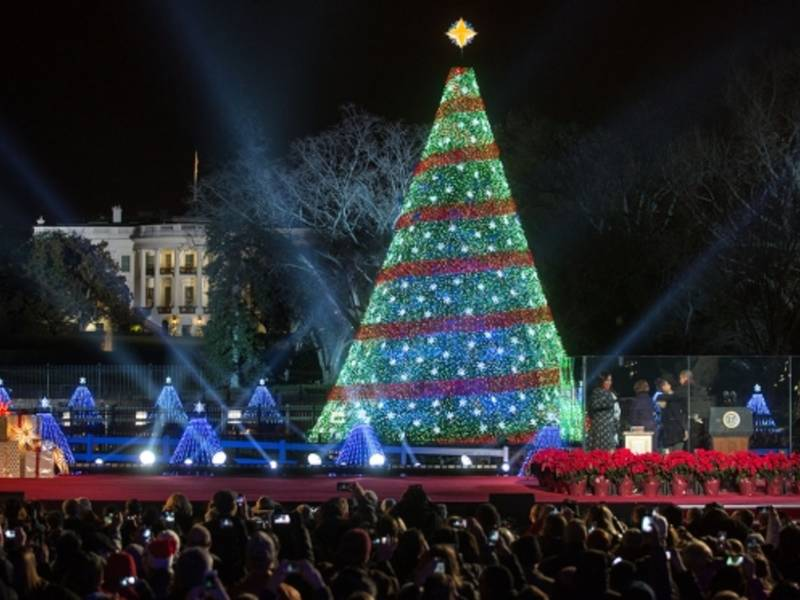 Whitehouse Christmas Tree Lighting 2020 Washington Dc | Eavfrw