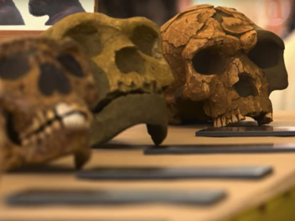 Neanderthals in California? Maybe so, provocative study says