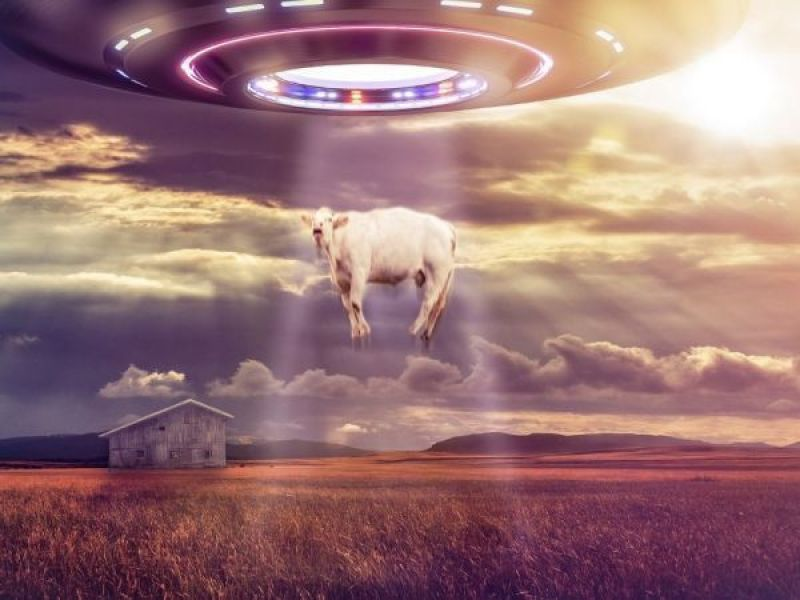 UFO Sightings in Newton Date Back to the 1970s