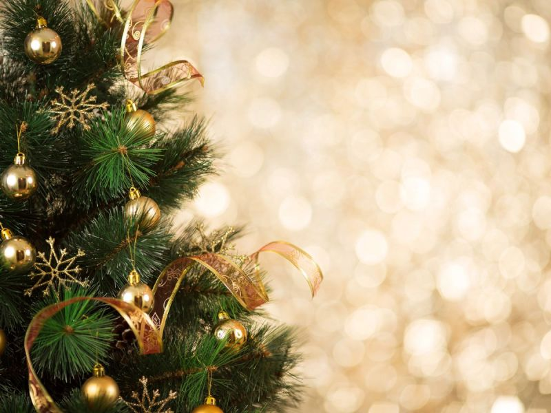 need christmas greens where to buy plus support a good cause - Christmas Greens