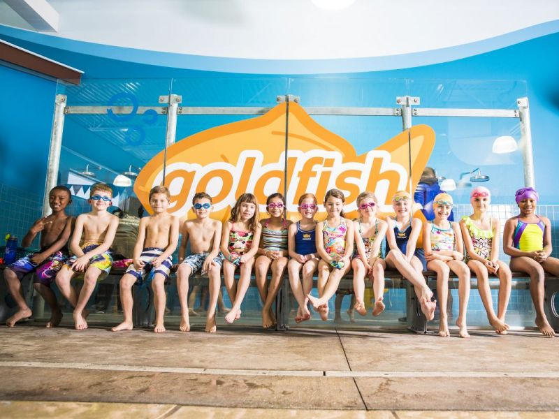 Goldfish Swim School Opens New Wicker Park Location Bucktown Il Patch