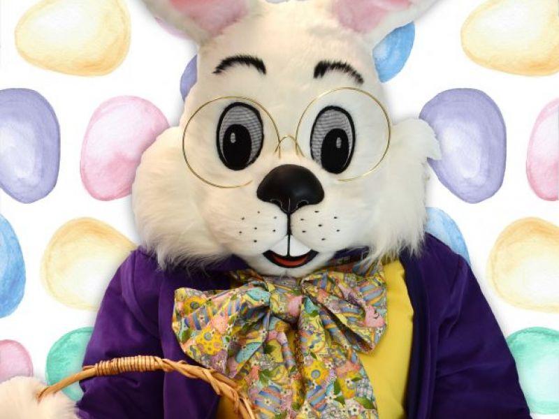Avalon Alpharetta Ga >> Easter Bunny to Visit the Alpharetta Welcome Center   Alpharetta, GA Patch