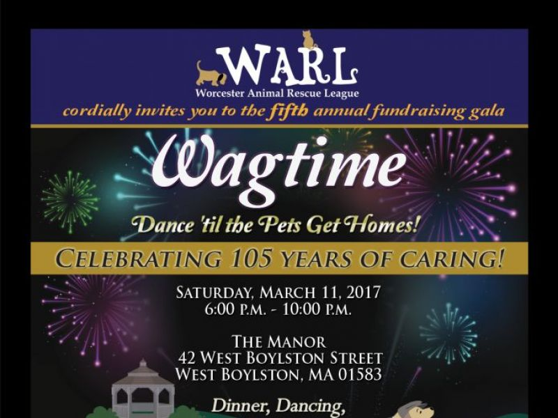 worcester animal rescue league to host wagtime fundraiser