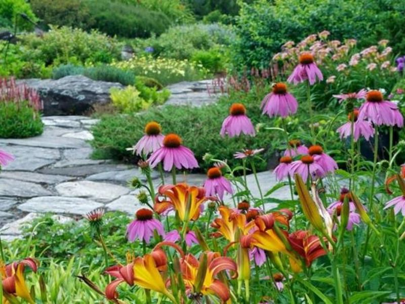 brewster flower garden. Plant Sales Bloom In And Near Brewster Flower Garden A