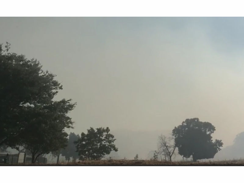 Castro Fire Near Gilroy Almost Contained Cal Fire