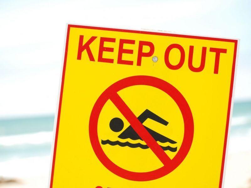 South Bay Swim Team Redondo Beach