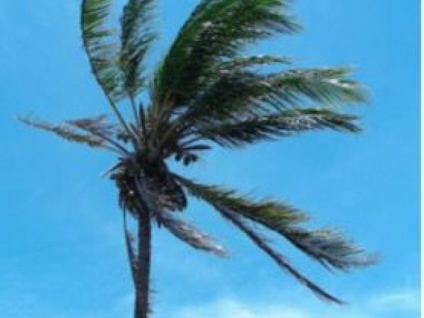 Strong winds on the way