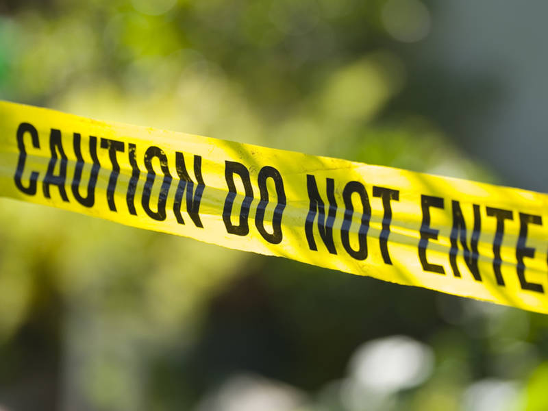 Man Killed In Pescadero Creek Crash