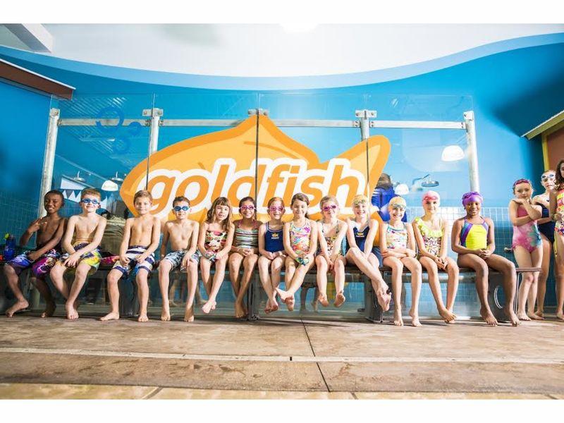 Goldfish Swim School To Open In Brookfield Brookfield Wi Patch