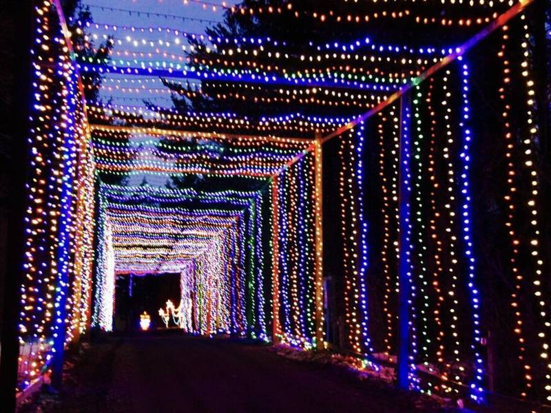jellystone carnival of lights opens nov 25 caledonia wi patch