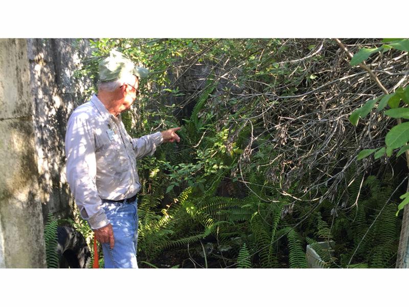 Hillsborough plans to rehab run down fish farm patch for Florida tropical fish farms