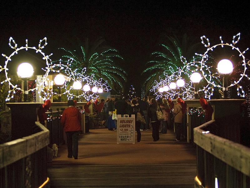 Botanical gardens seeks volunteers for holiday lights patch for Florida botanical gardens largo