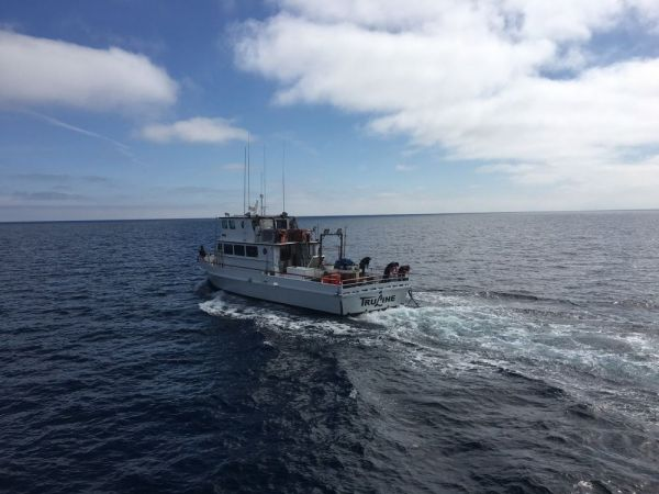 Coast Guard rescues sportfishing vessel