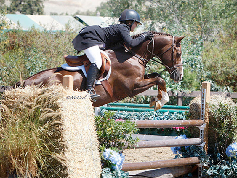 San Juan Capistrano USJHA Pony Hunter Derby Winners 2017 ...