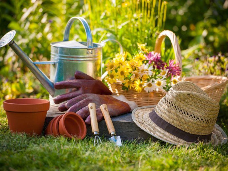 bed stuys 462 halsey community garden wants your compost - Halsey Garden
