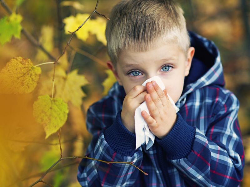 Fall Can Trigger Asthma and Allergy Symptoms | Palatine, IL