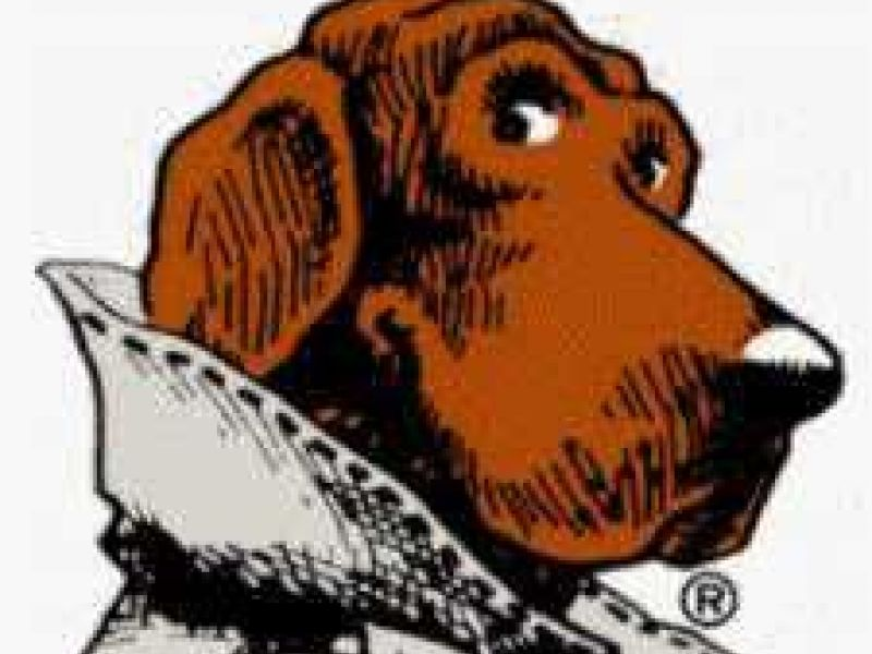 mcgruff safety camps registration april 24 in loudoun county