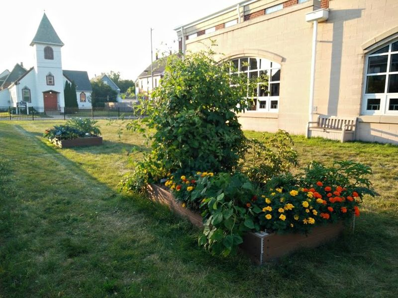 Harrison Elementary Community Garden Produces Learning, First Crop ...