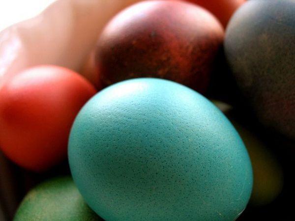 Egg Hunt In Bala Cynwyd Benefiting Alex's Lemonade Stand @ West Laurel Hill Cemetery   Bala Cynwyd   Pennsylvania   United States