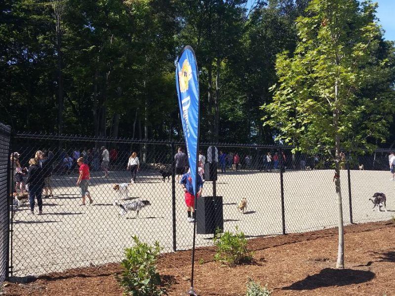 Salem Ma Dog Park