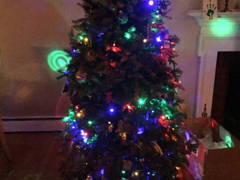 Reading Options For Getting Rid Of The Christmas Tree | Reading ...