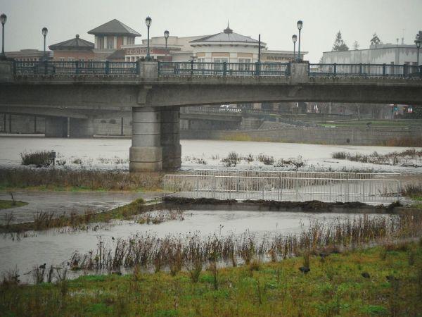 Help Prevent Storm Drain Flooding In Your Neighborhood