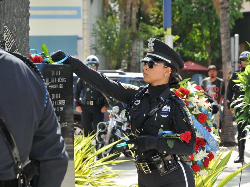 Sheriff Department West Palm Beach Jobs