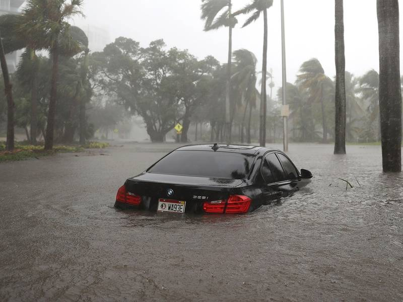 how to spot a car with water damage after hurricane irma - Garden Spot Auto Auction