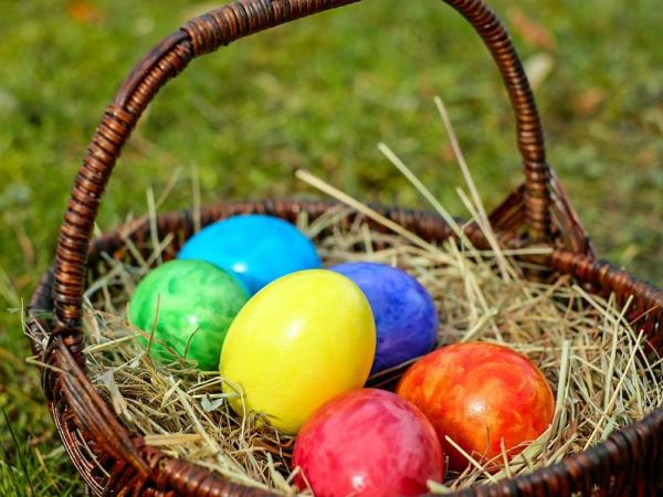 Easter egg hunts all over Maple Ridge and Pitt Meadows