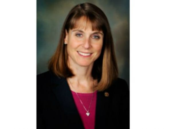 Governor Rauner Should Submit Budget Proposal Rep Fine